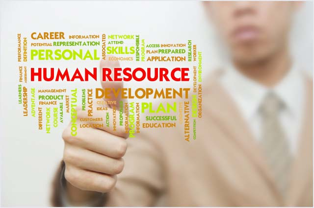 Human-Resource-Wellington