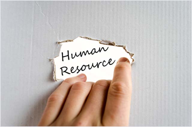 Human-Resource-Wellington3